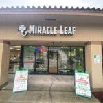 Medical Marijuana Registry