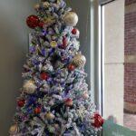 Medical Marijuna Card Doctor Florida Christmas Gifts