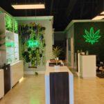 Coconut Creek Miracle Leaf Medical Marijuana Doctor Card MMU Registry