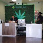 West Palm Beach Miracle Leaf Medical Marijuana Doctor Card MMU Registry