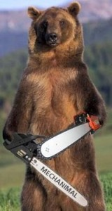 I give the bear even odds against Rousey.