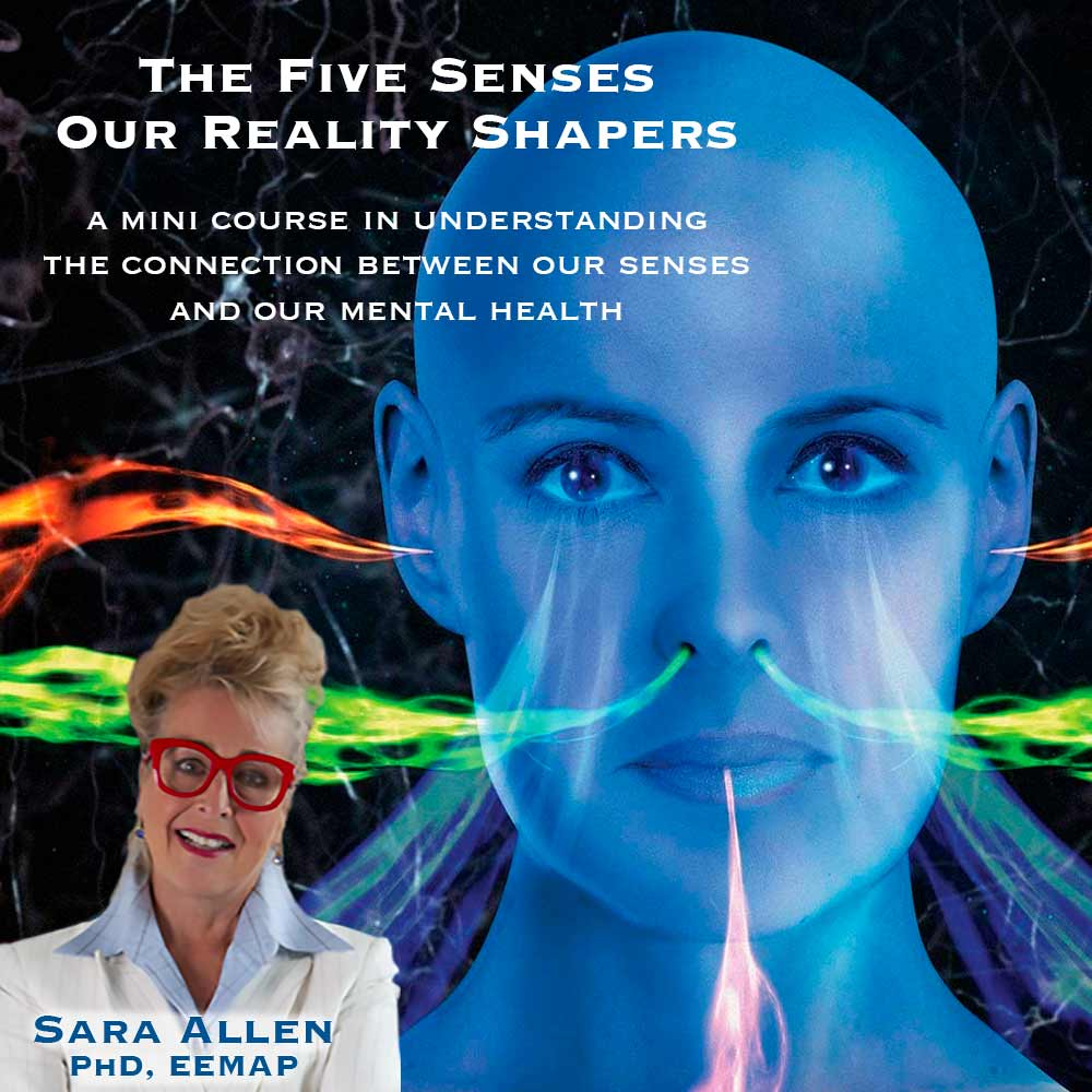 The Five Senses - Our Reality Shapers A mini course in understanding the connection between our senses and our mental health