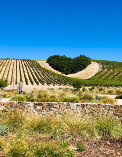 California Heart Winery