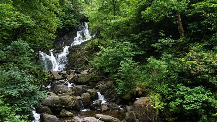 Torc Waterfall in the Killarney National Park