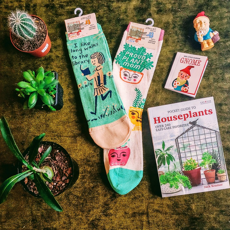 Gifts, Socks, Succulents, Cacti, Mini Garden Gnome, Guide to Houseplants Book
