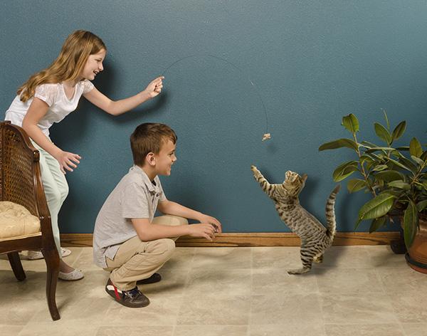 Kids holding a Cat Dancer cat toy.