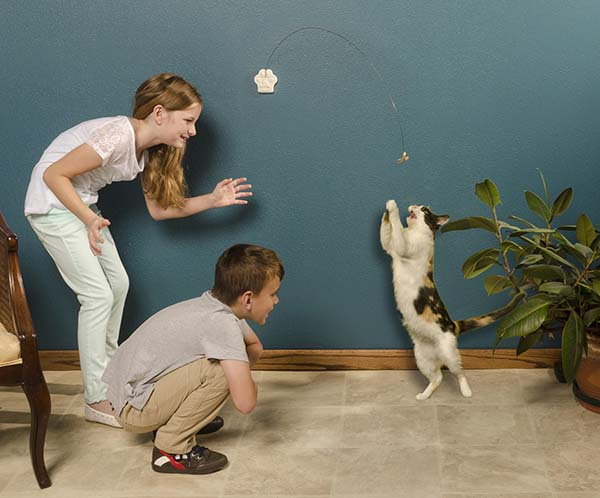 Children playing with a cat.