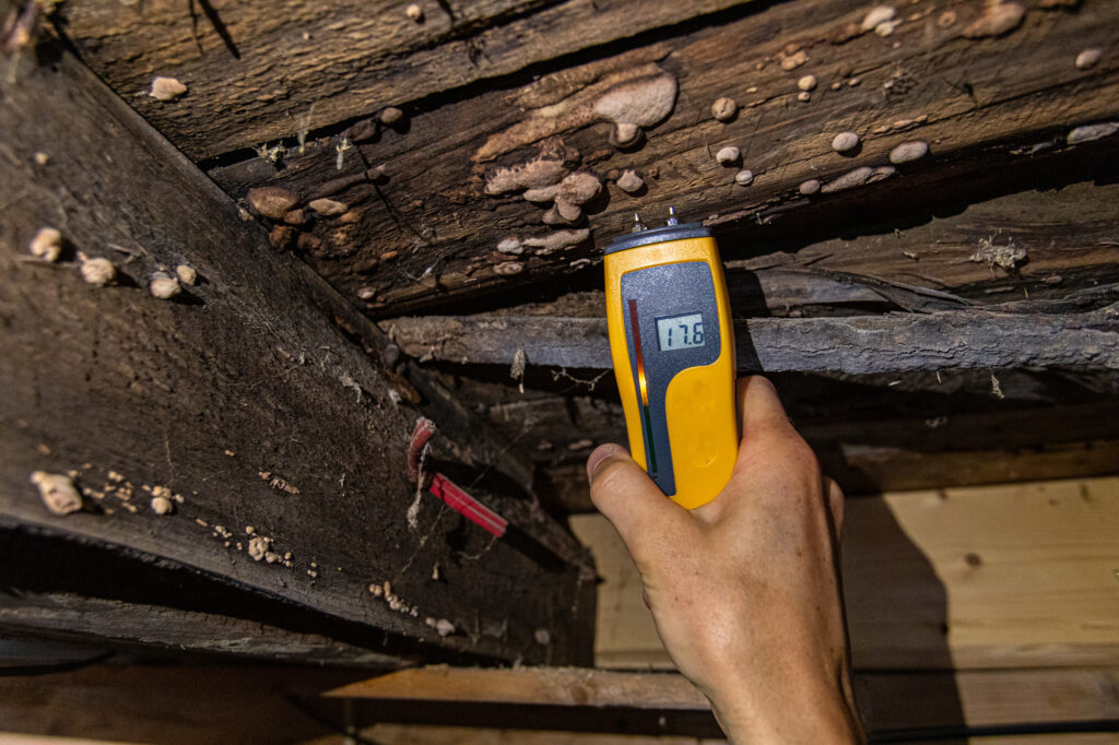 test-mold-asbestos-lead-cleaning