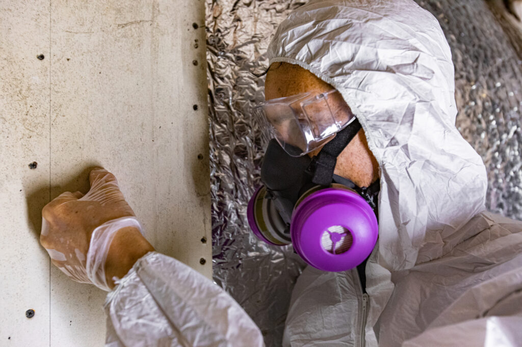 mold-removal-toxins-testing