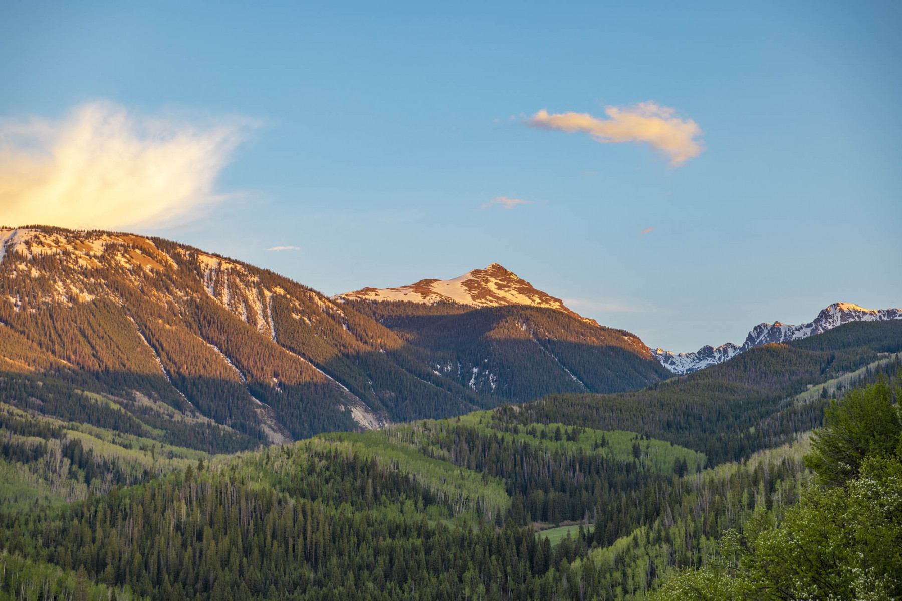 VAIL-MLS-ORDERED-154-1