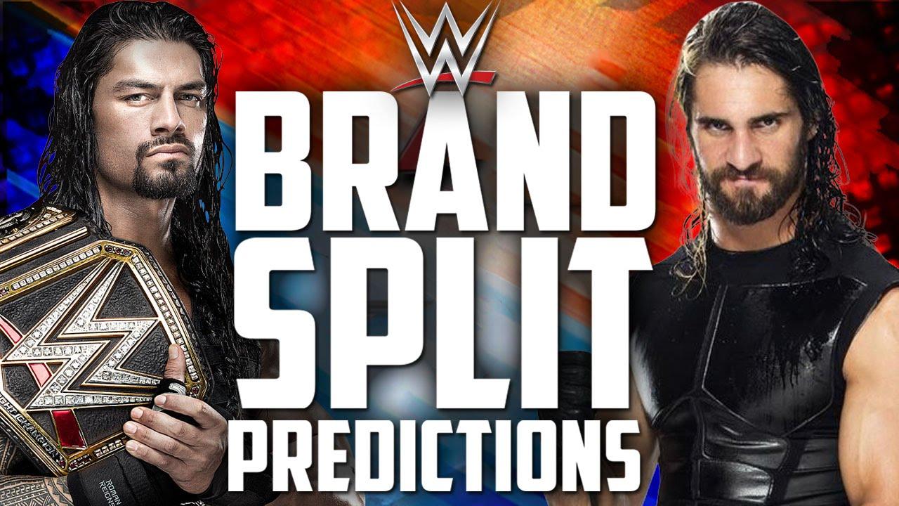 The WWE 2016 Brand Split