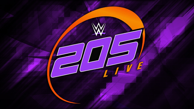 WWE 205 Live Review 12/20/2016