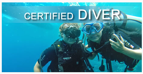 Private Scuba Diving in Roatan