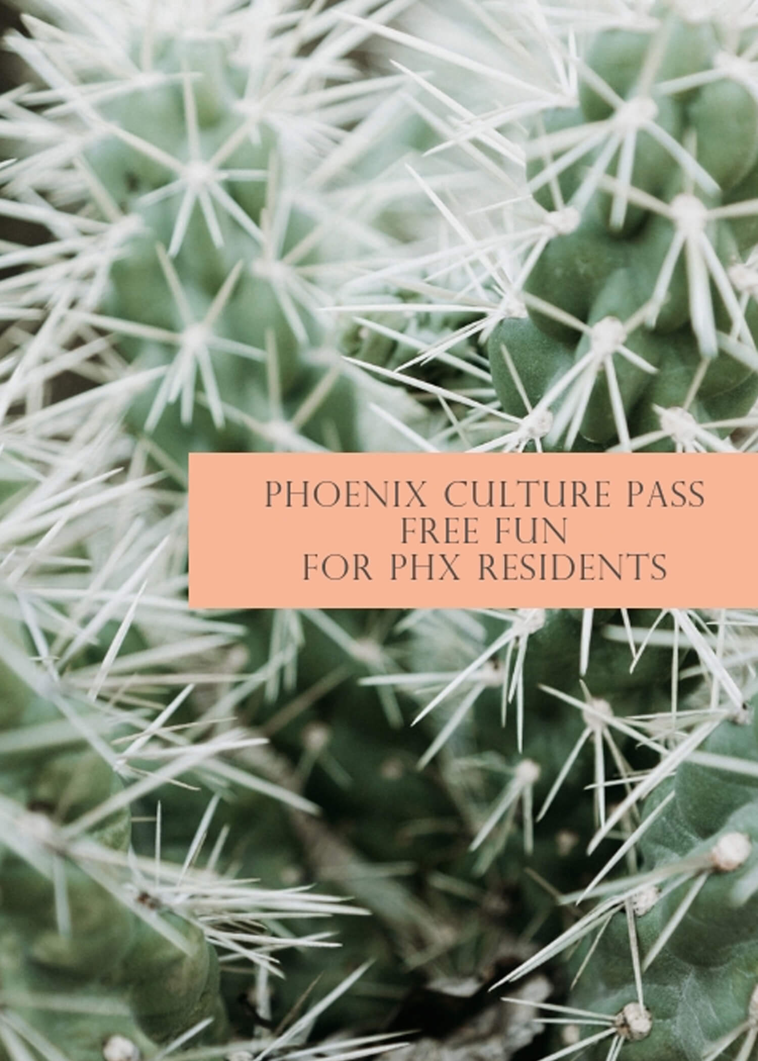 Have you heard of the Culture Pass?