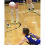 Volleyball Warrior
