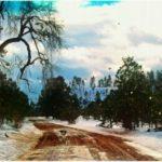Weekly Photo Challenge – Winter