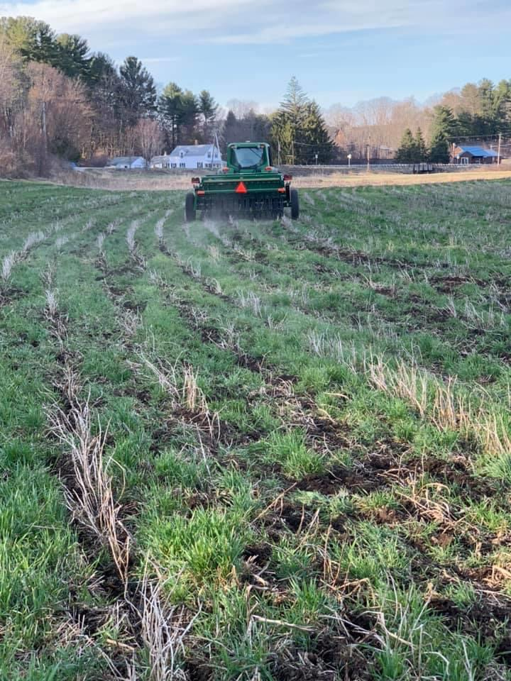 Planting Barley in Central Massachusetts with the No-till Planter