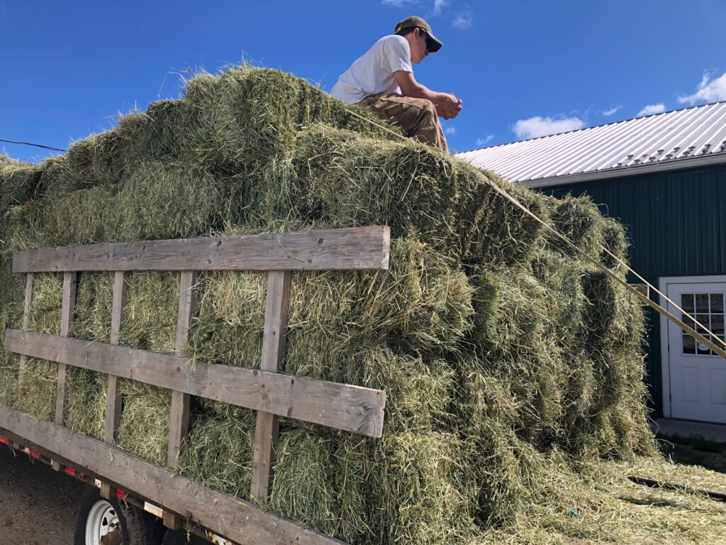 hay ready for delivery hardwick ma