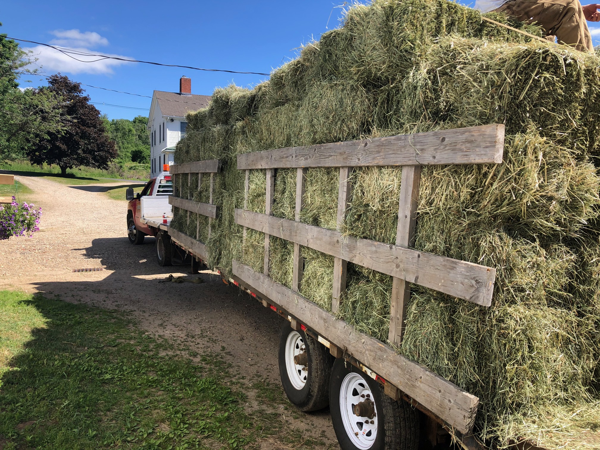 small square hay bales for sale, Gilbertville Hardwick MA