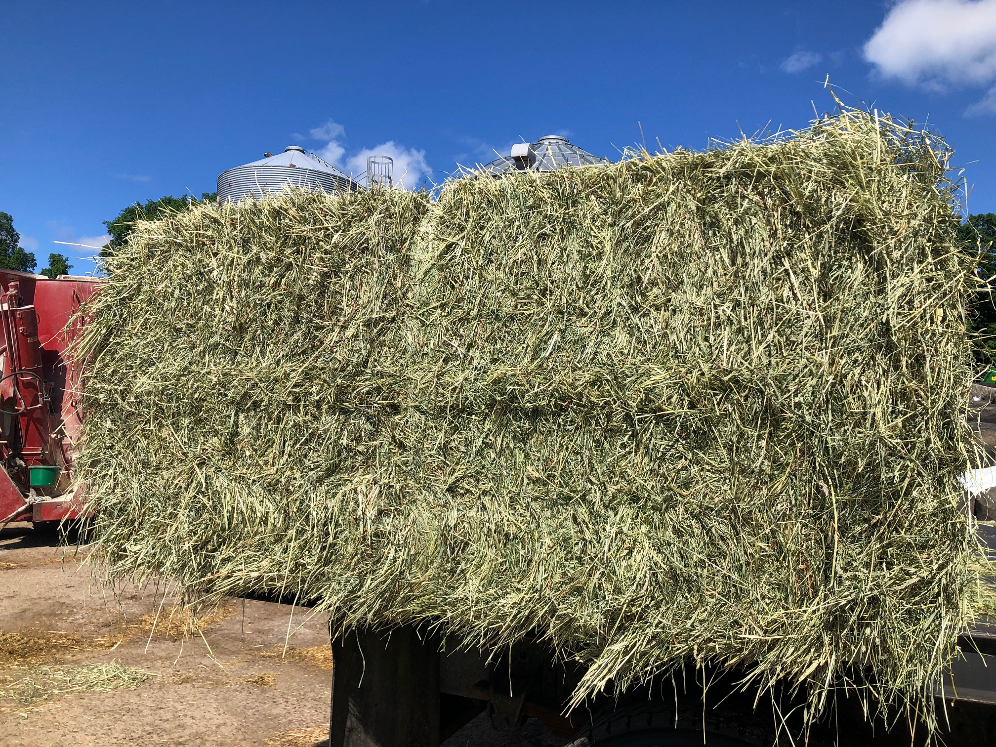large square hay bales for sale