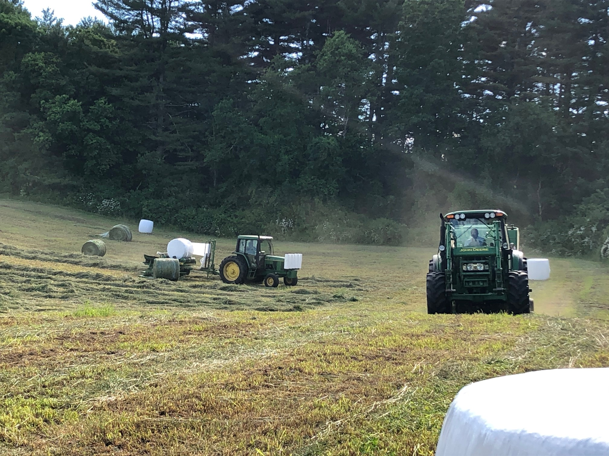 wrapped round hay bales, round bales, wrapped round bales, haylage bales, insilage bales