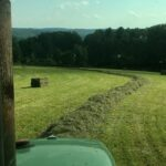 large hay bales for sale. Horse Quality. Livestock Hay