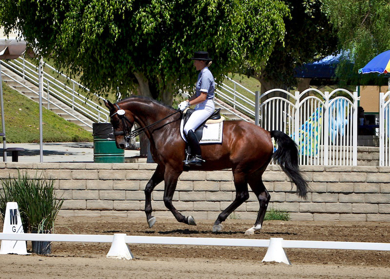 Cool August Nights, 08/26/10 - Verena and Unity, Fourth Level Test 2