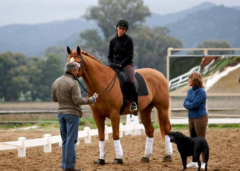 Juan explains something to Verena and Rondo's owner Angie Garfinkel, while Rocko looks on, 12/15/10