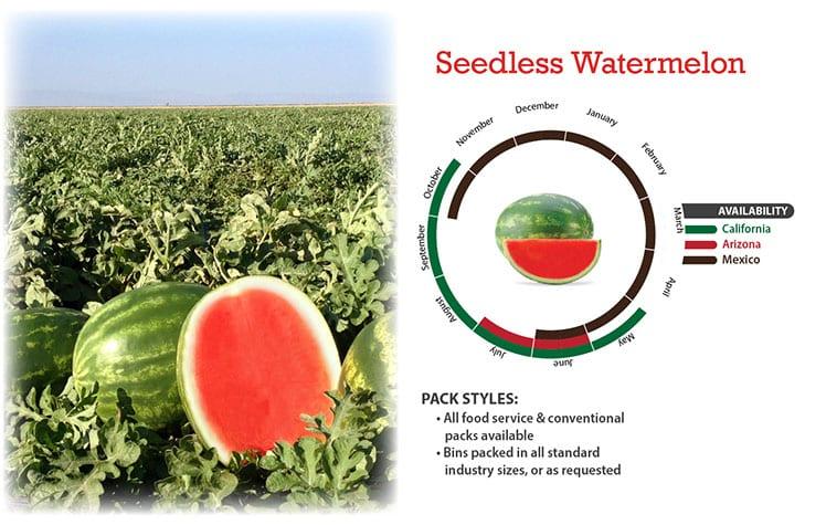 Seedless Watermelon