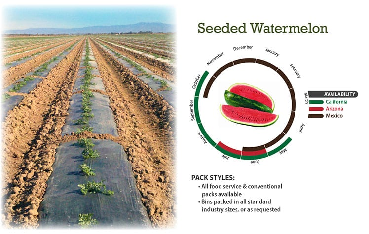 Seeded Watermelon