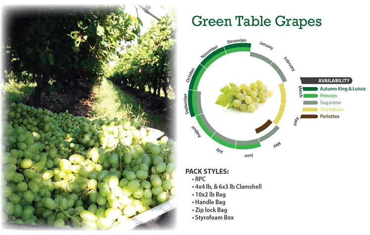 Green Table Grapes