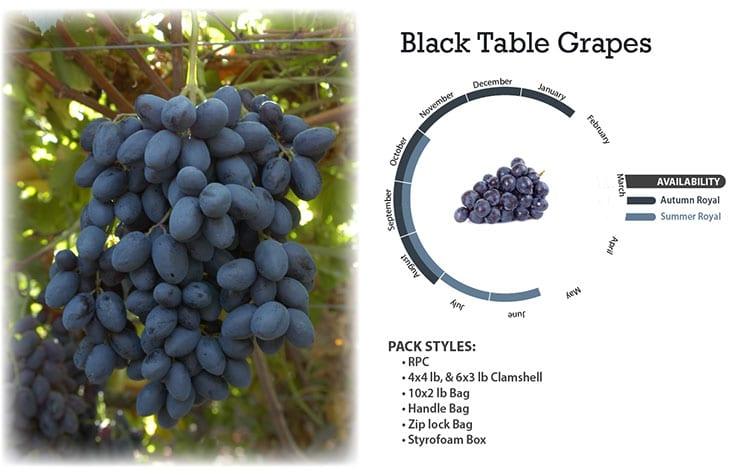 Black Table Grapes
