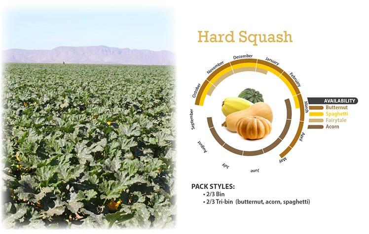 Hard Squash
