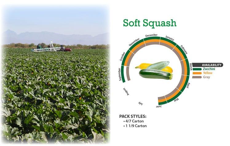 Soft Squash