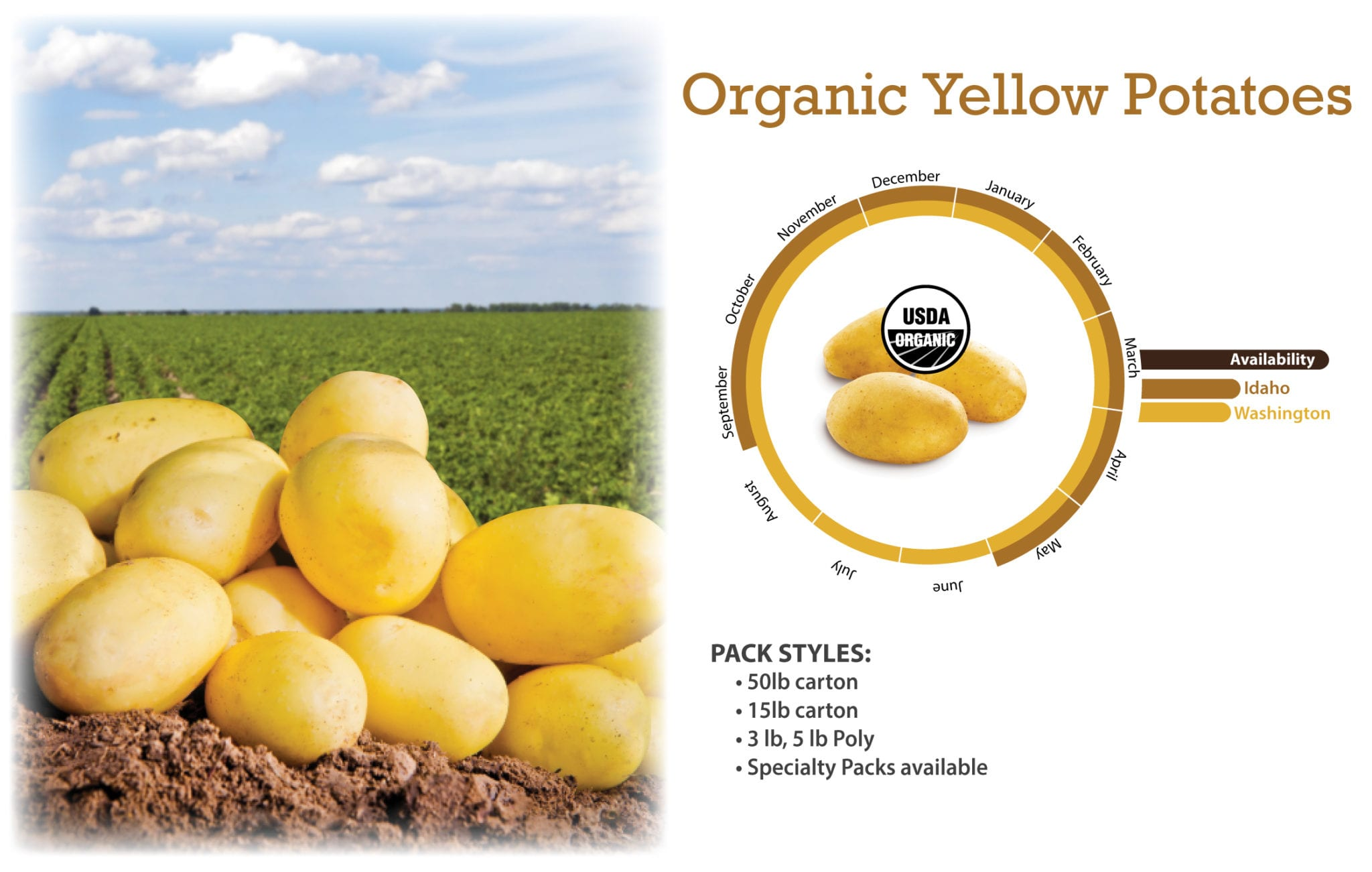 Organic Yellow Potatoes