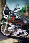 BMW Motorcycle Art Print #6 Audubon Place