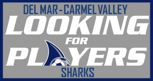DMCV Sharks Player Tryouts