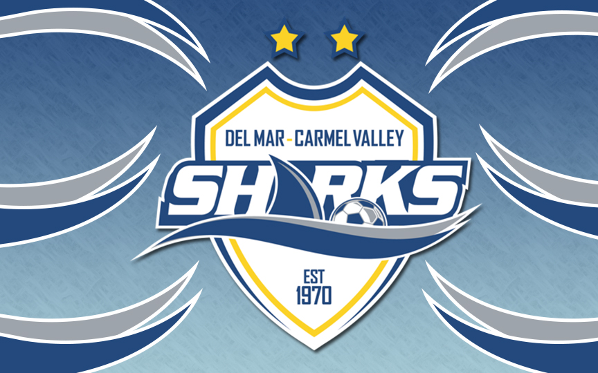 How Are Clubs Doing These Days? Checking in with DMCV Sharks