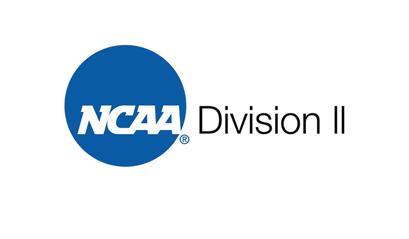 College Soccer: The Beauty of D2 Recruiting