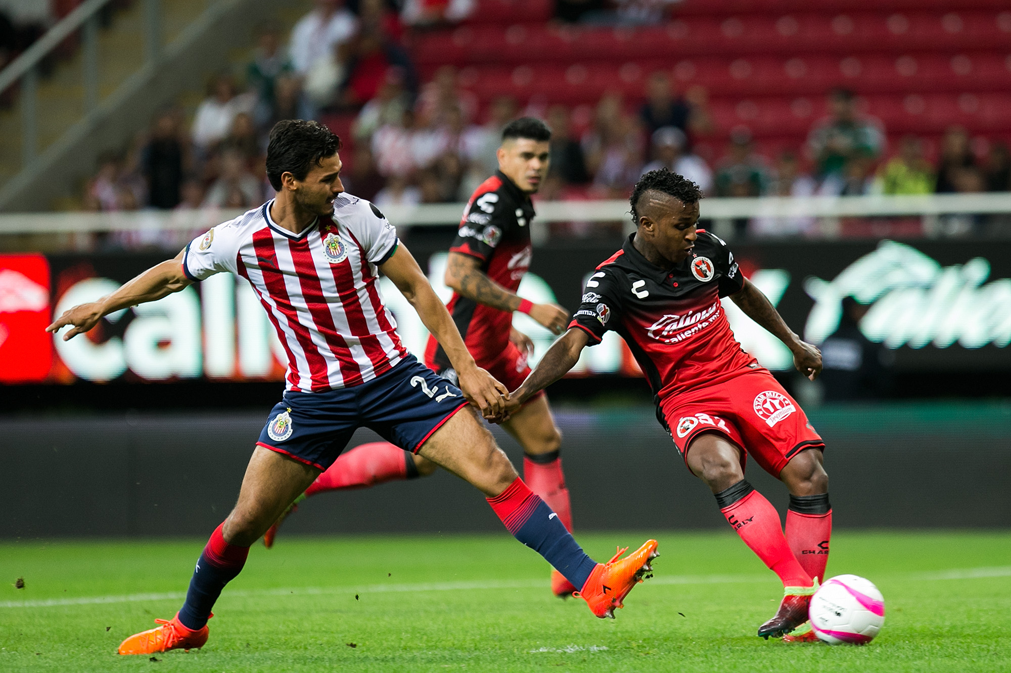 Chivas 3-1 Club Tijuana: A spot in the playoffs is quickly slipping away from Xolos