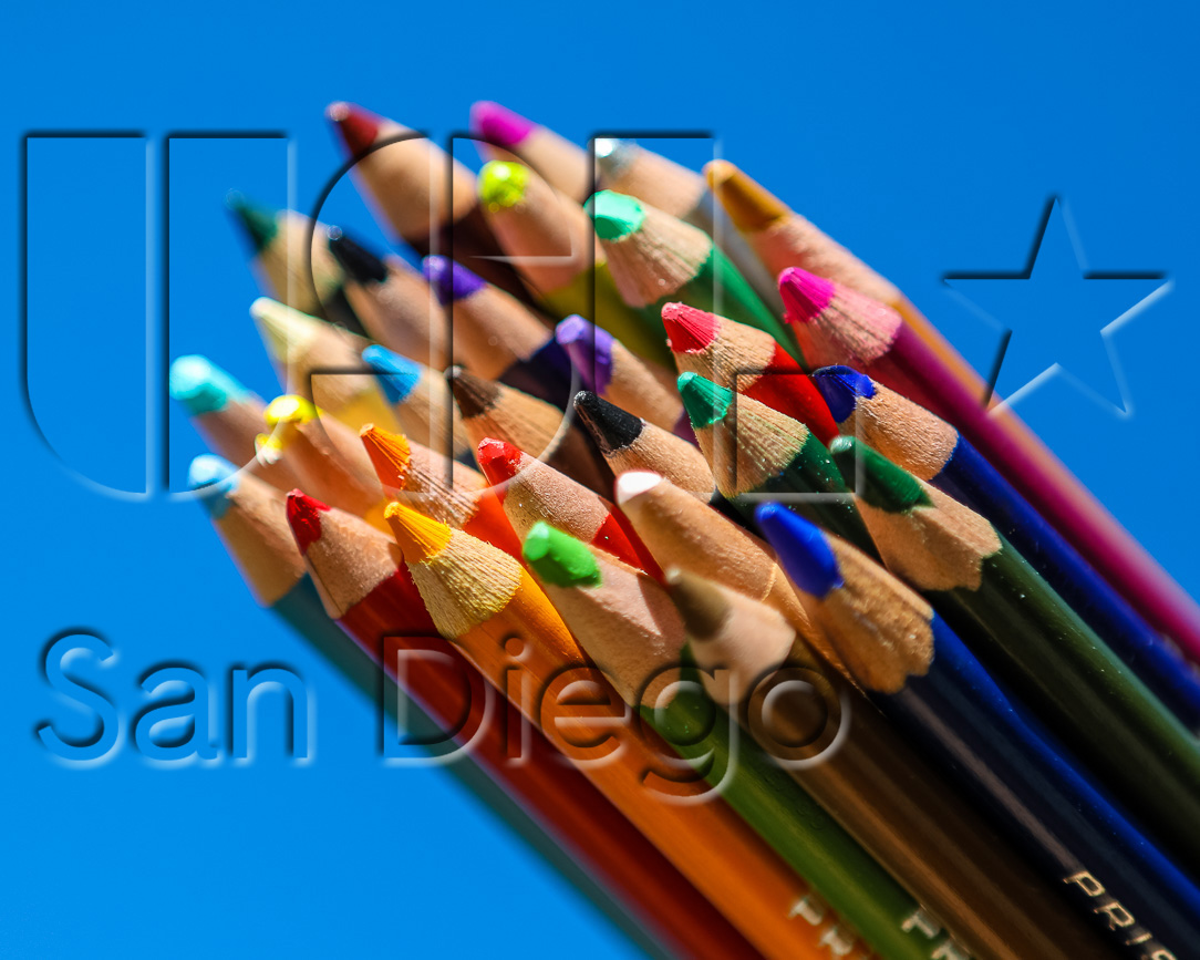 USL San Diego Needs Your Colorful Input