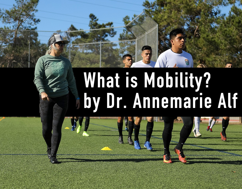 What is MOBILITY? Great info this week from Olympus Movement