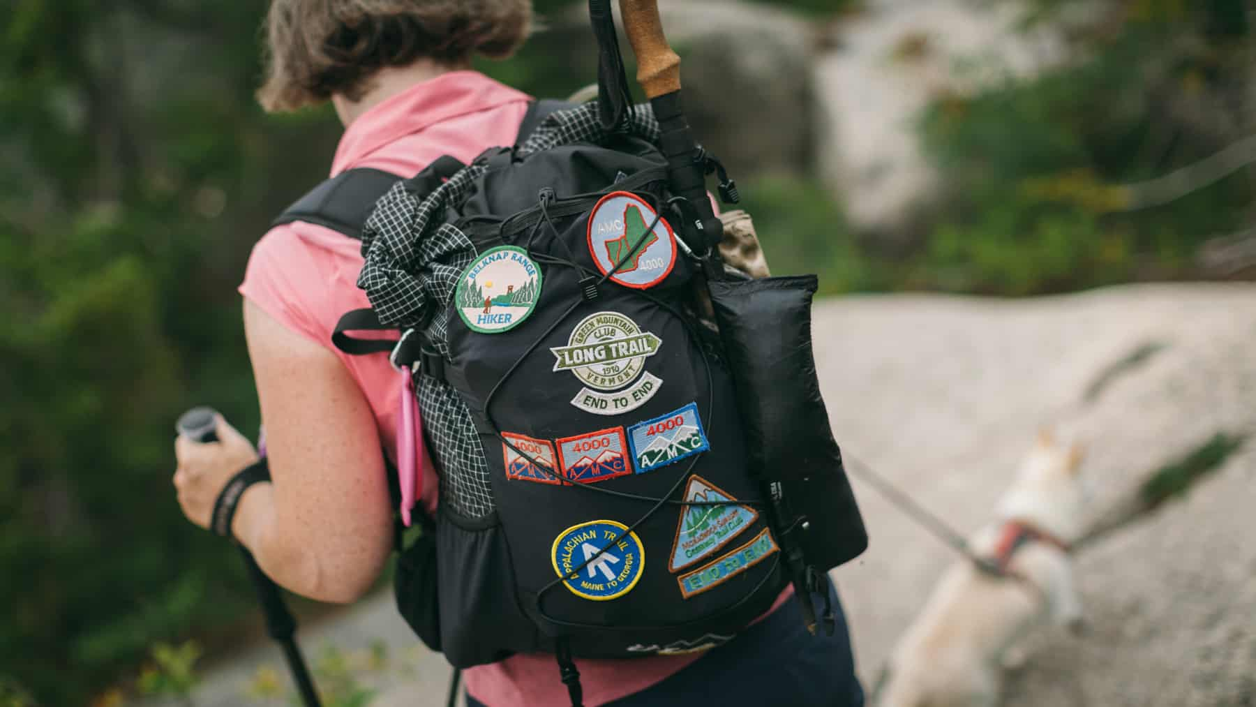 A hikers backpack on the top of Hedgehog Mountain