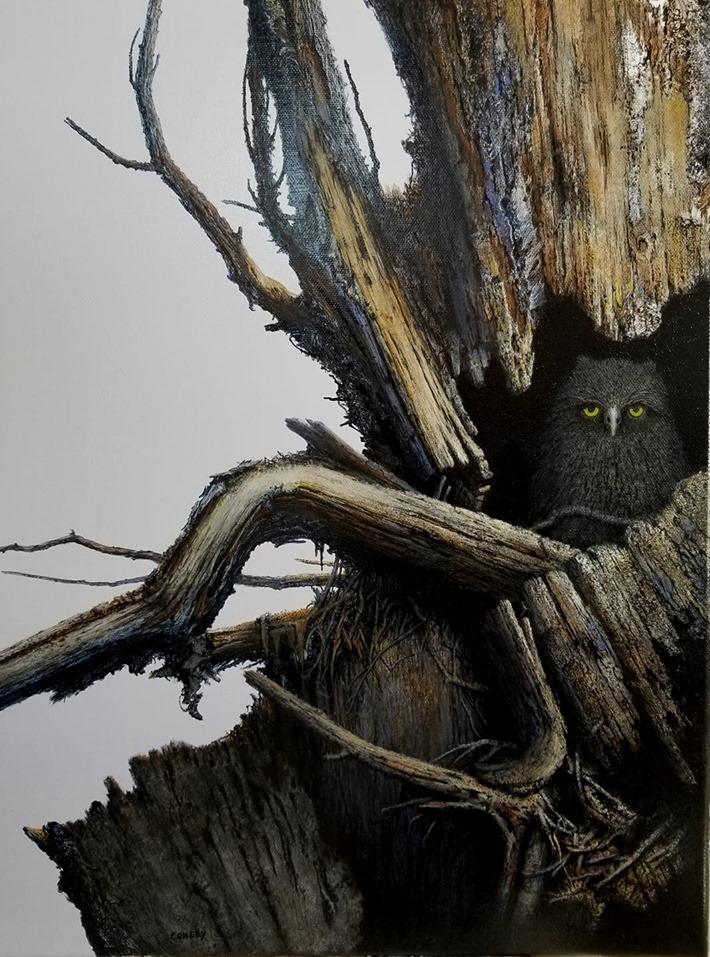 Mystery Owl