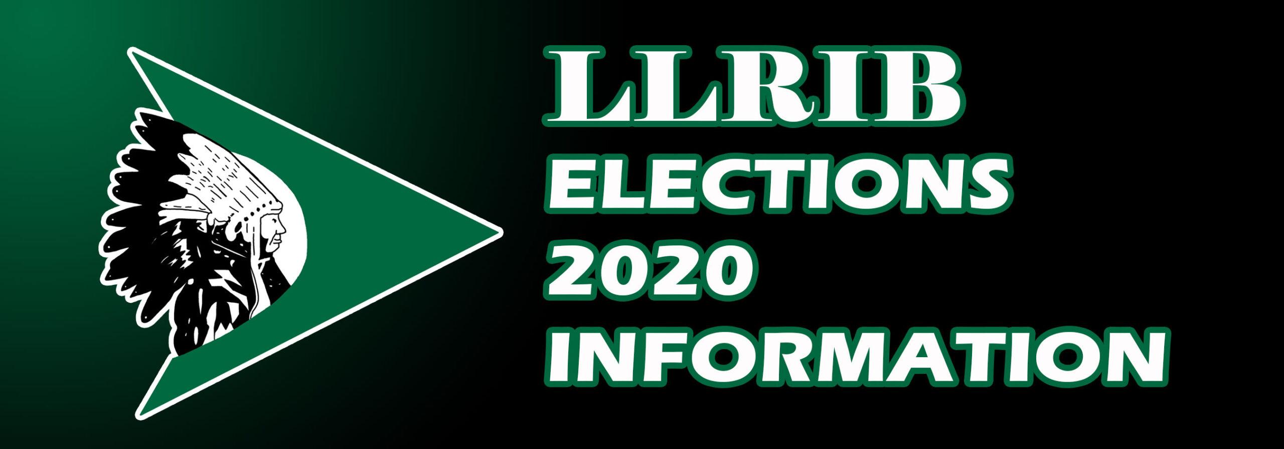 llrib elections banner