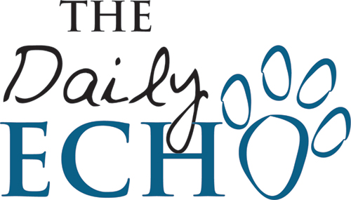 The Daily Echo Logo Design