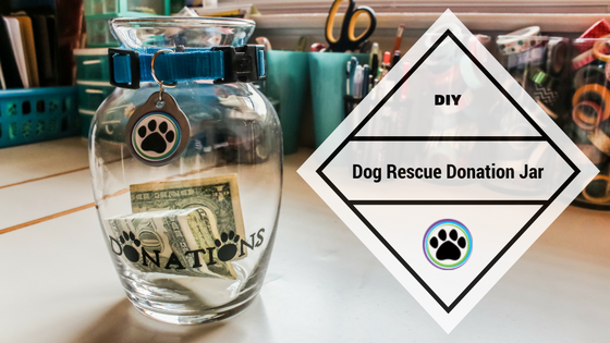 Dog Rescue Donation Jar | Arctic Spirit Rescue
