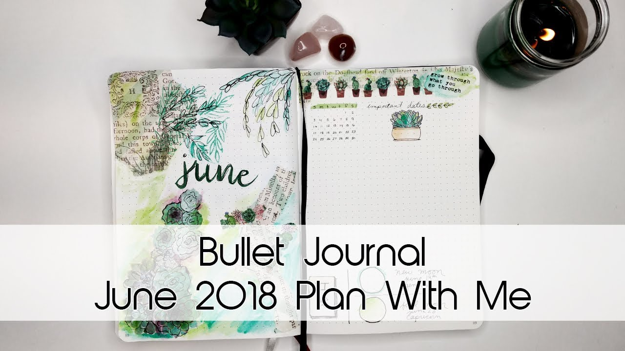 June Succulent Bullet Journal Theme