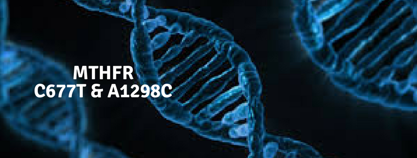 MTHFR mutations: C677T and A1298C
