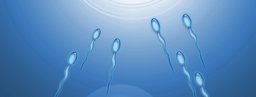 Infertility: Are Men Also To Be Blamed ?